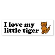 I love my little tiger (brown tabby)