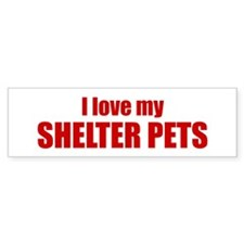 I love my shelter pets.