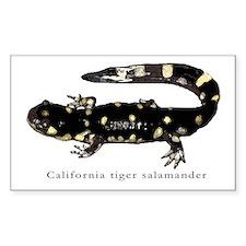 Tiger salamander 1 Rectangle Decal