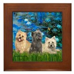 Lilies3/3 Cairn Terriers Framed Tile