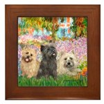 Garden/3 Cairn Terriers Framed Tile