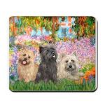 Garden/3 Cairn Terriers Mousepad