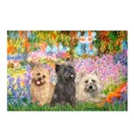 Garden/3 Cairn Terriers Postcards (Package of 8)