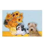 Sunflowers/PBGV8+Wheaten8 Postcards (Package of 8)