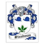 Steadman Family Crest Small Poster