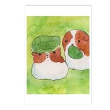 Guinea pigs and lettuce Postcards (Package of 8)
