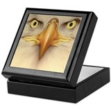 Eagle Eyes Keepsake Box