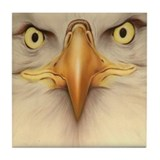 Eagle Eyes Tile Coaster