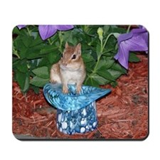 Chester the chipmunk Mousepad