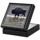 Backlit Bison Keepsake Box