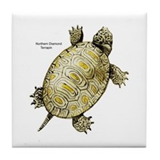 Diamondback Terrapin Tile Coaster