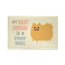 Pomeranian Poof Ball Rectangle Magnet (10 pack)