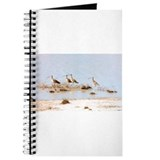 Unique Shorebird Journal