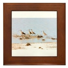 Unique Shorebird Framed Tile