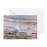 Animals wildlife Greeting Card