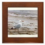Cute Birdwatching Framed Tile
