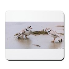 Unique Shorebird Mousepad