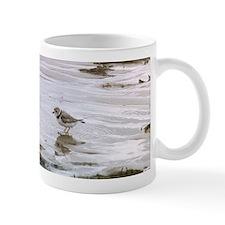 Piping Plover 1 Mugs