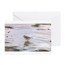 Funny Shorebird Greeting Cards (Pk of 10)