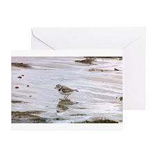 Funny Shorebird Greeting Card
