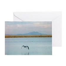 Unique Waterbird Greeting Card