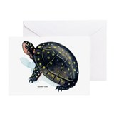 Spotted Turtle Greeting Cards (Pk of 10)