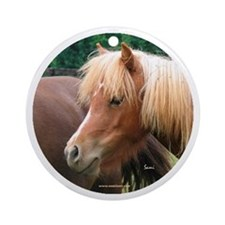 Classic Mini Horse Portrait Keepsake (Round)