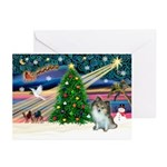 XmasMagic & Pom (sw) Greeting Cards (Pk of 20)