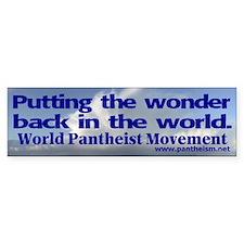 """""""Putting the wonder"""" Bumper Sticker"""