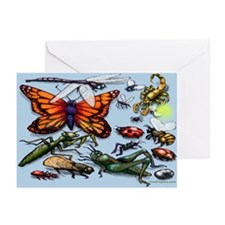 Bug Greeting Cards (Pk of 20)