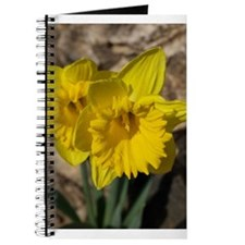 Cool Daffodil Journal