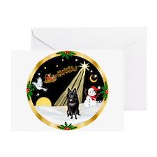Night Flight/Schipperke Greeting Card