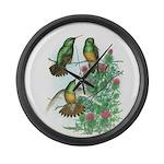 Buff-bellied Hummingbirds Giant Clock