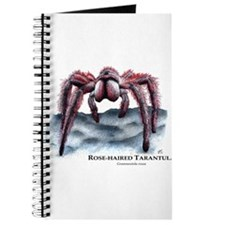 Rose-Haired Tarantula Journal