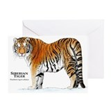 Siberian Tiger Greeting Card