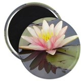 "Waterlily 2.25"" Magnet (100 pack)"