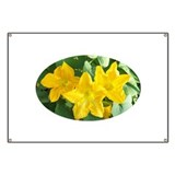 Oval Yellow Flower Banner