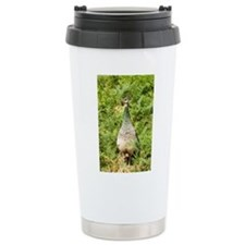 Peahen Ceramic Travel Mug