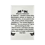What is a Veteran? Rectangle Magnet (100 pack)