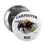 Carpenter Bee 2.25&quot; Button (10 pack)