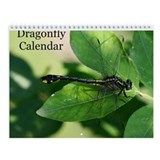 American Dragonfly Wall Calendar