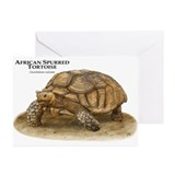 African Spurred Tortoise Greeting Cards (Pk of 20)