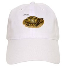 Eastern Box Turtle Baseball Cap