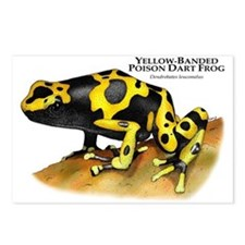 Yellow-Banded Poison Dart Fro Postcards (Package o