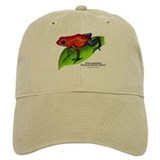 Strawberry Poison Dart Frog Baseball Cap