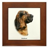 Bloodhound 9Y404D-124 Framed Tile