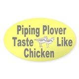 Oval Piping Plover Taste Like Chicken Decal
