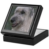 Gentle Irish Wolfhound Keepsake Box
