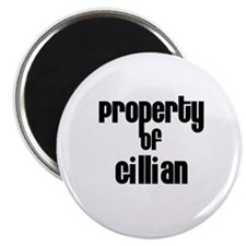 Property of Gillian Magnet