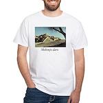 Mohenjo-daro T-Shirt